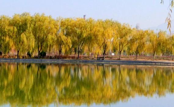 张掖:深秋润泉湖景色美